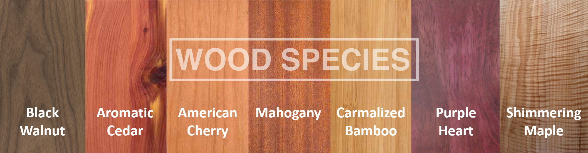 7 Beautiful Wood Species